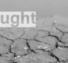 drought2_grey