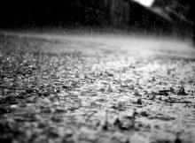 Storm2_grey