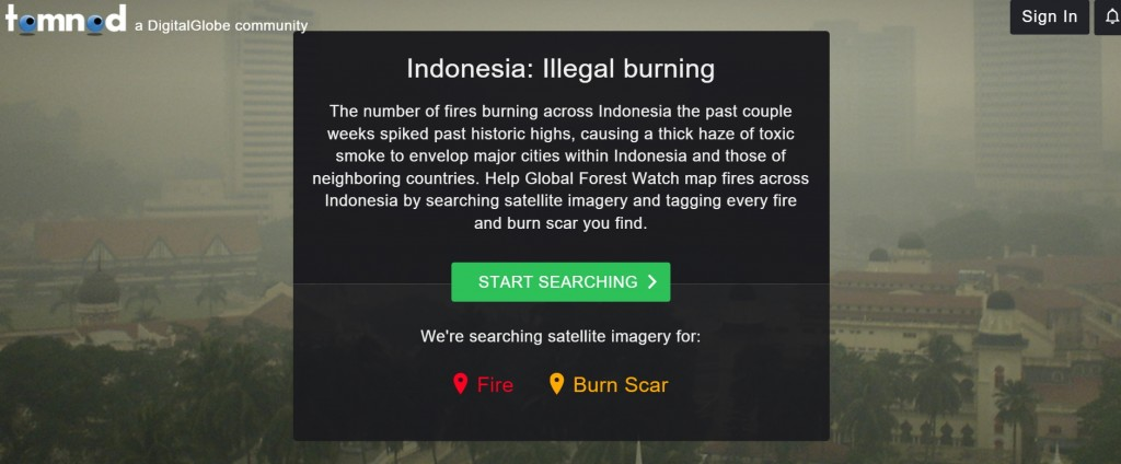 tomnod Indonesia illegal burning detection